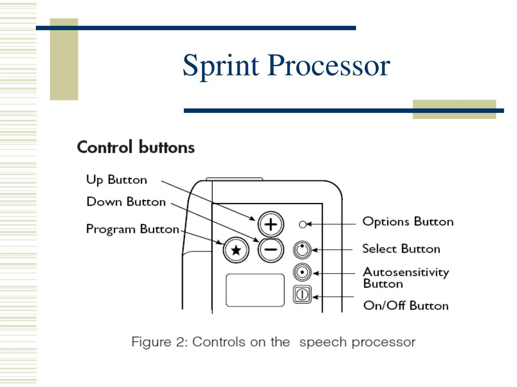 Sprint Processor