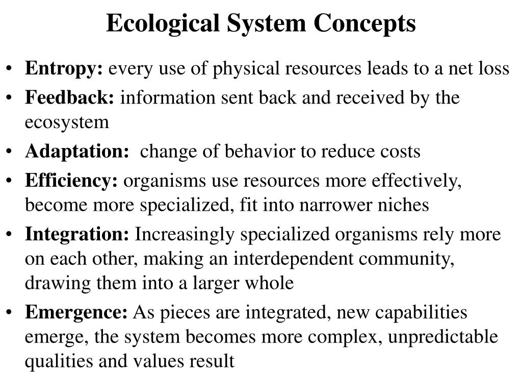 Ecological System Concepts