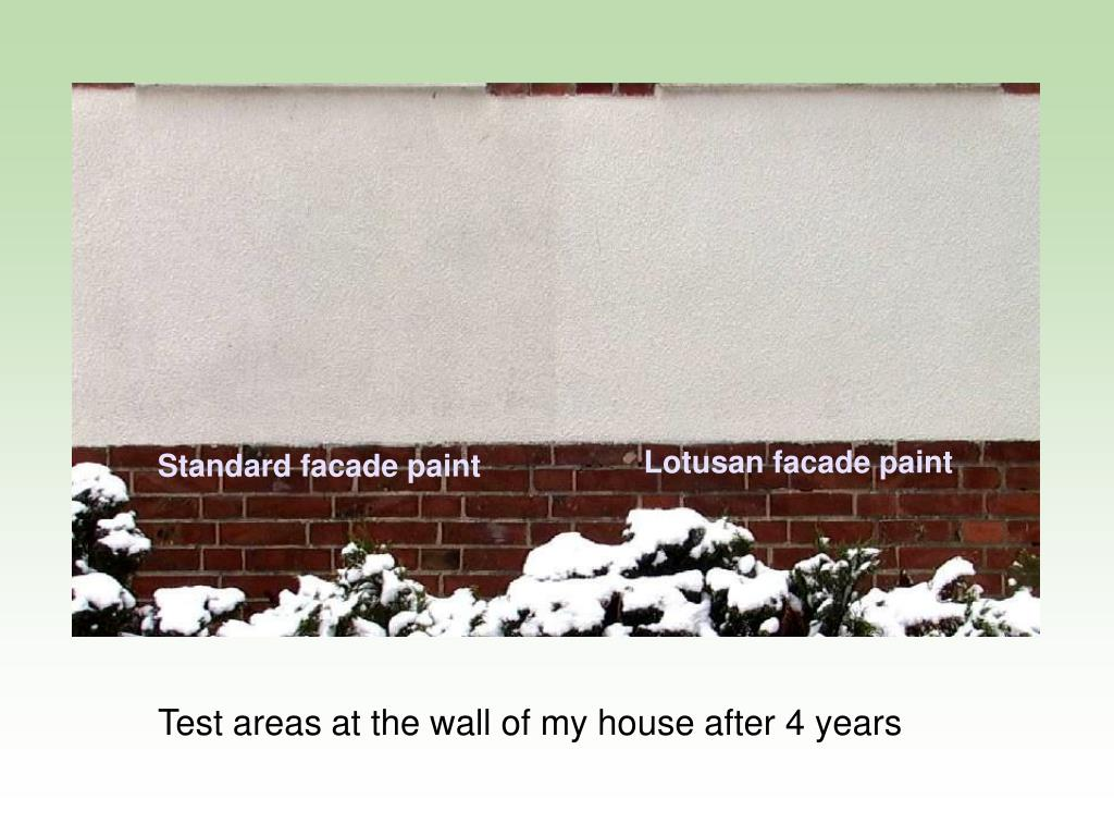 Lotusan facade paint