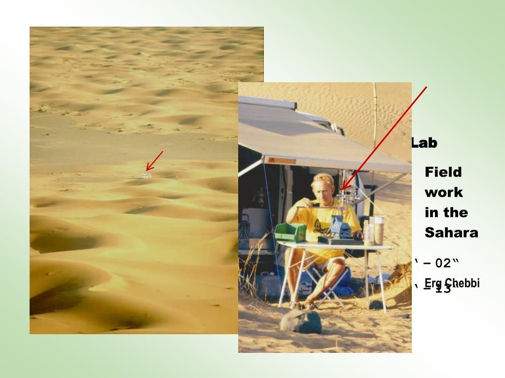 My Sahara Lab