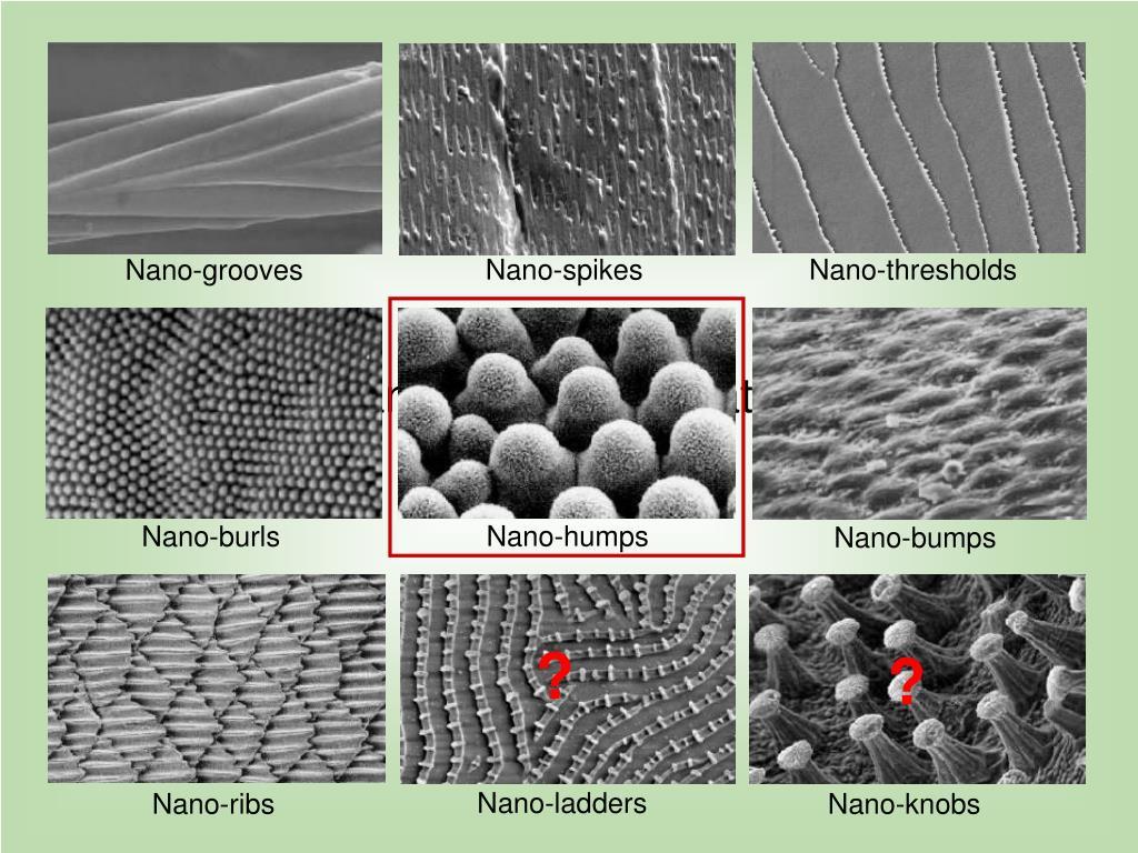 Nano-spikes