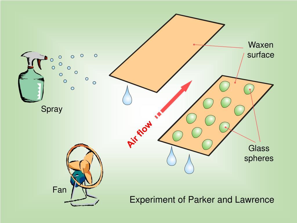 Waxen surface