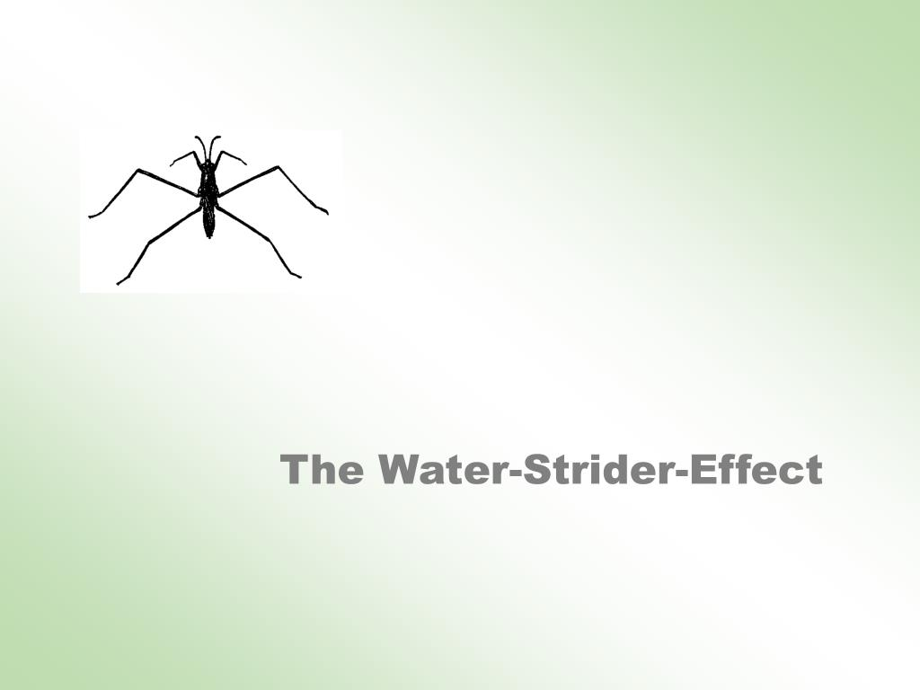 The Water-Strider-Effect