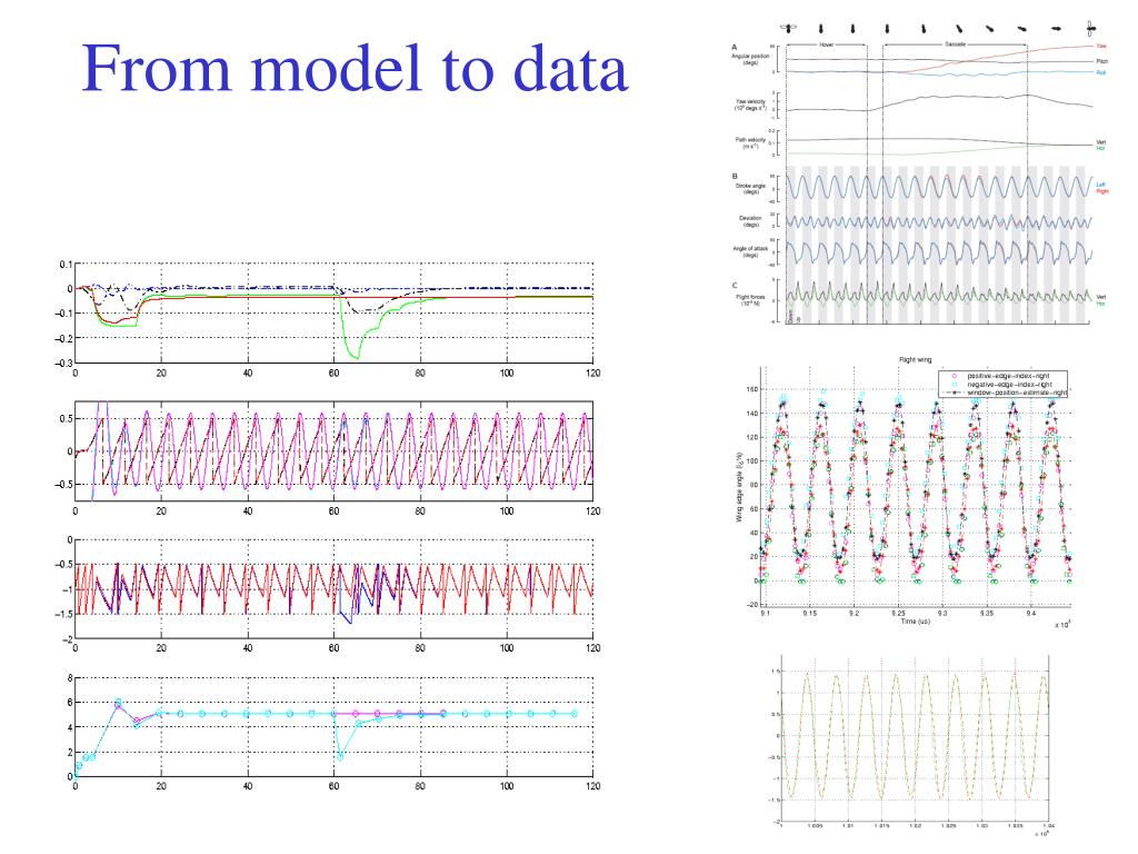From model to data