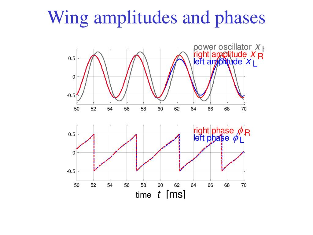Wing amplitudes and phases