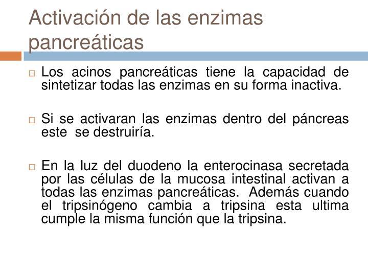 Activación de las enzimas pancreáticas