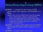 motion picture expert group mpeg