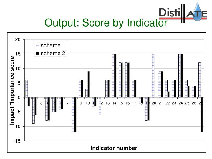 Output: Score by Indicator