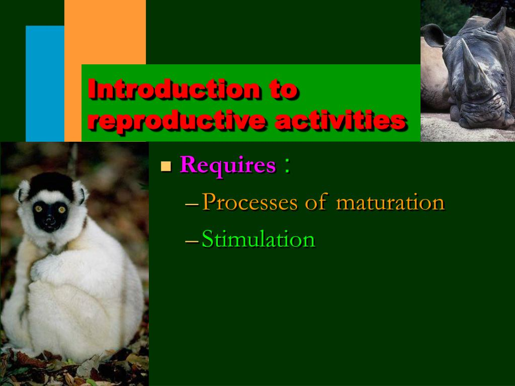 Introduction to reproductive activities