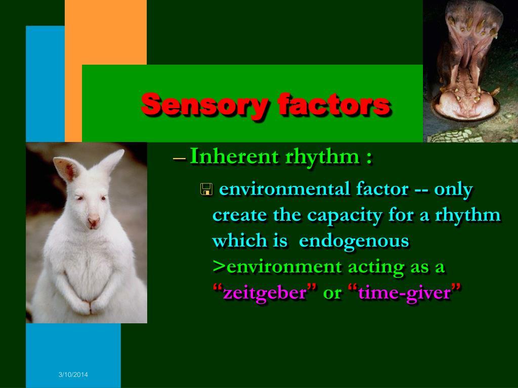 Sensory factors