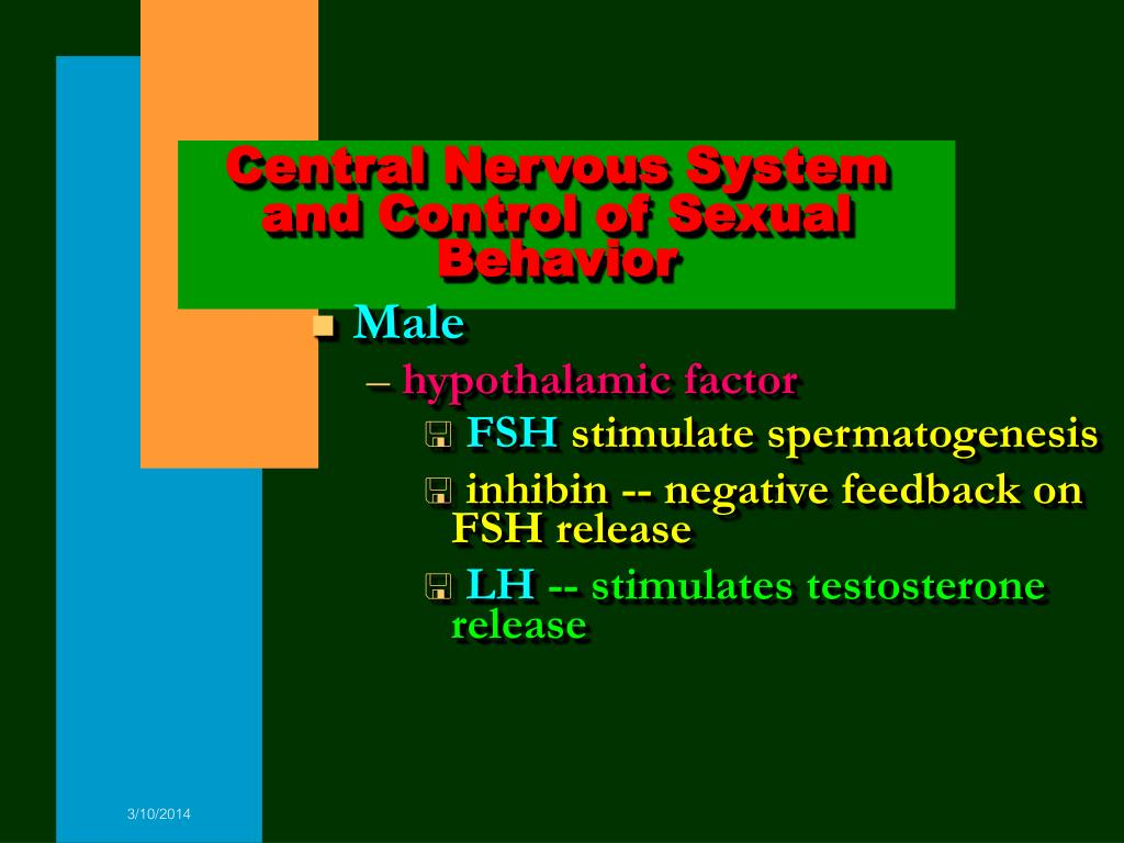 Central Nervous System and Control of Sexual Behavior