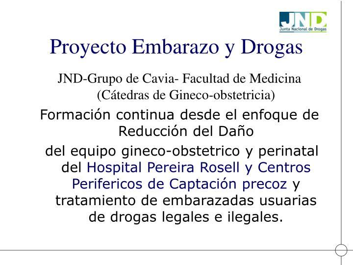 Proyecto Embarazo y Drogas