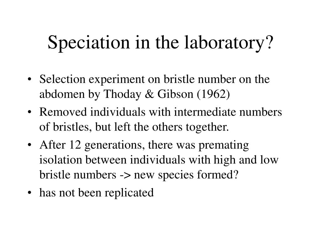 Speciation in the laboratory?