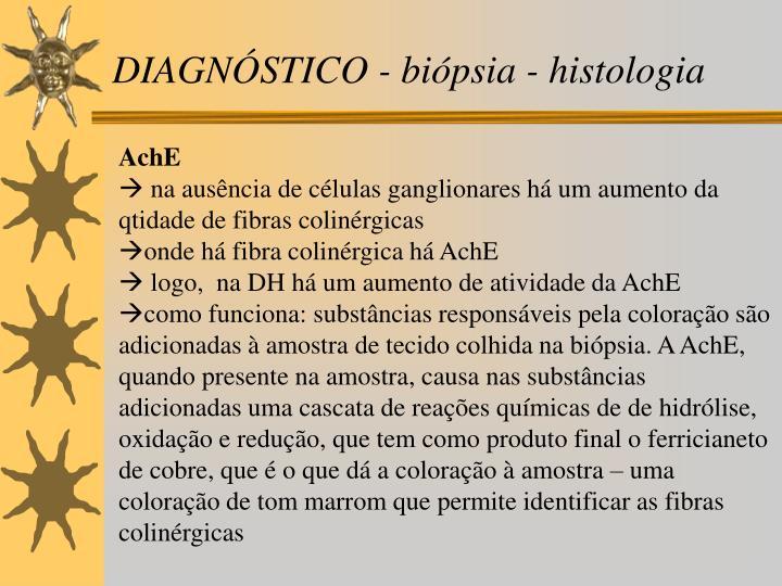DIAGNÓSTICO - biópsia - histologia