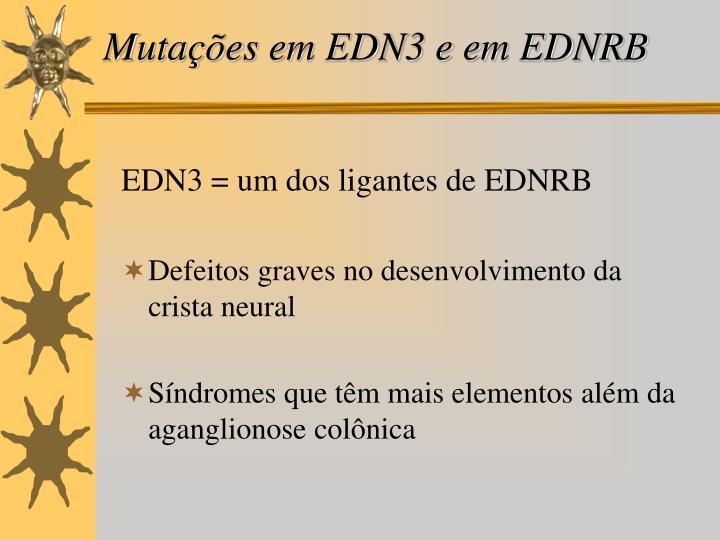 Mutações em EDN3 e em EDNRB