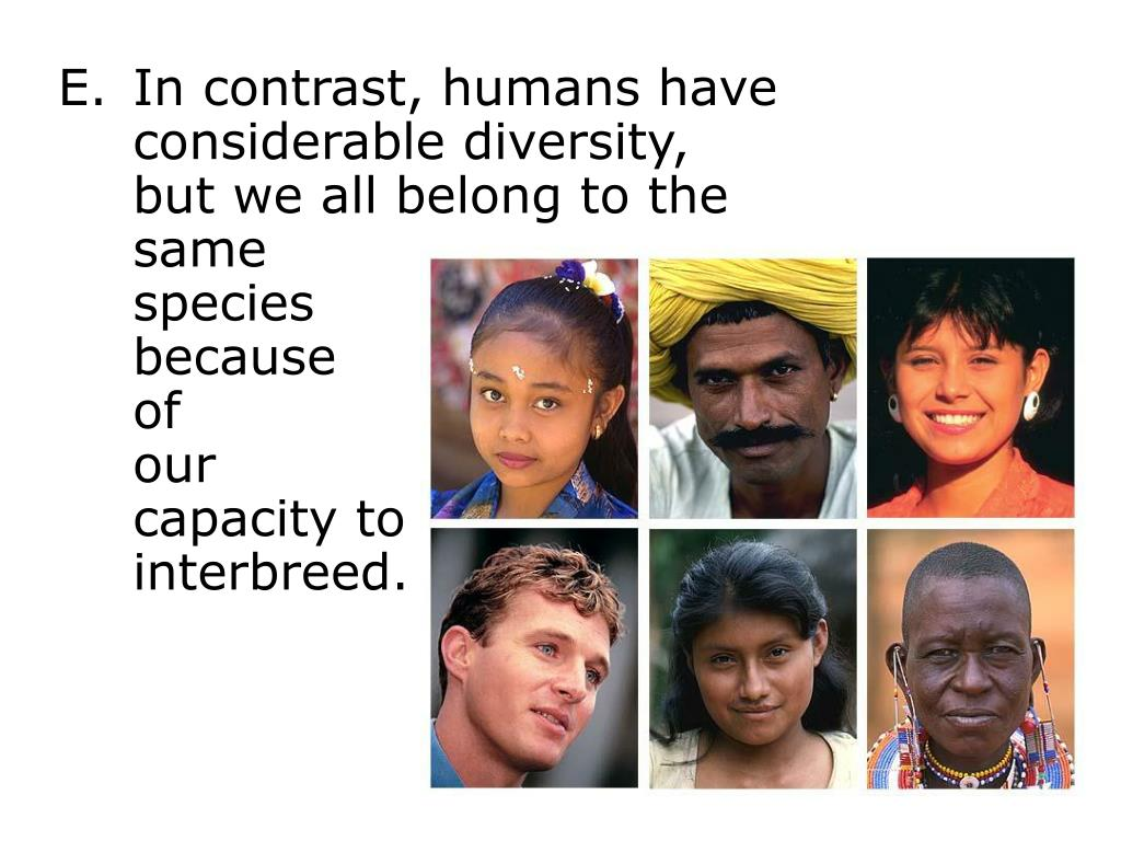 In contrast, humans have
