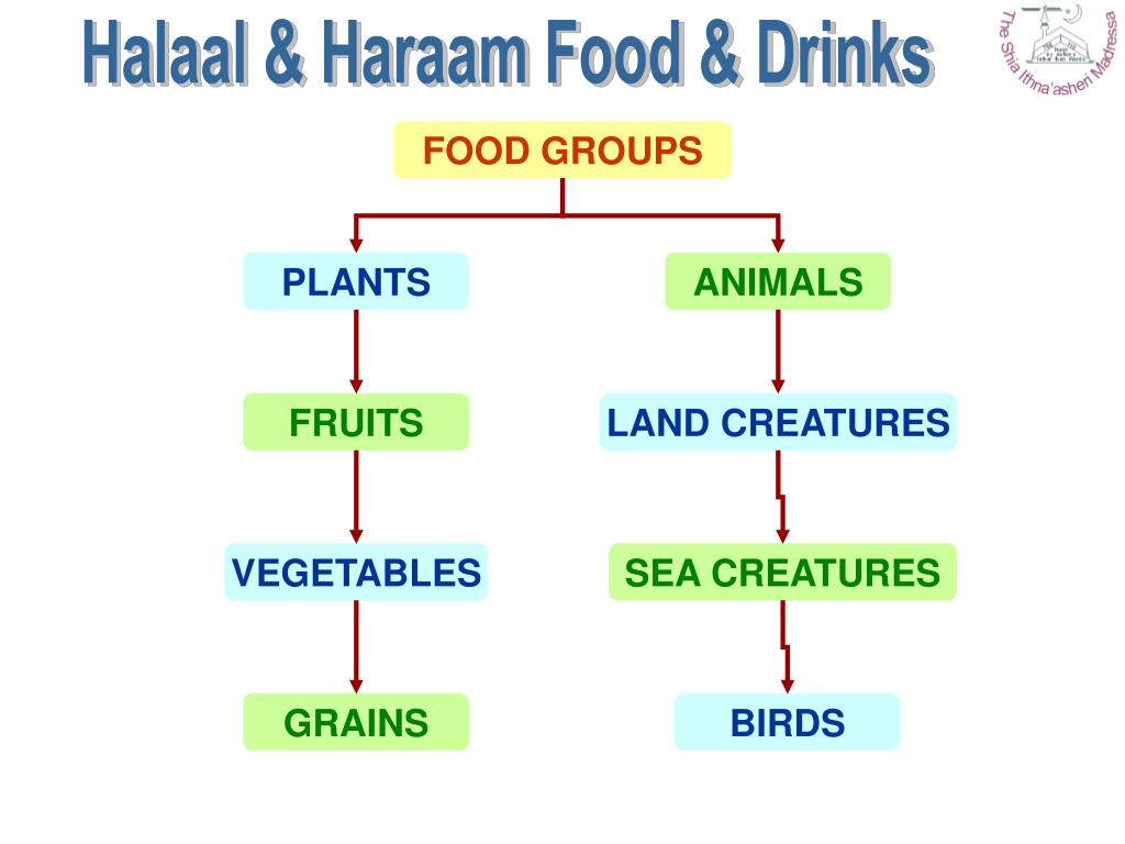 Halaal & Haraam Food & Drinks