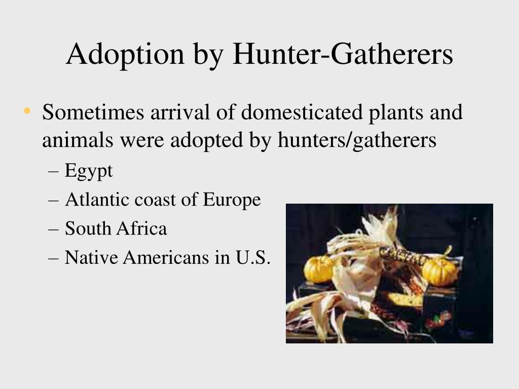 Adoption by Hunter-Gatherers