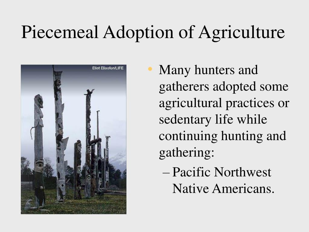 Piecemeal Adoption of Agriculture