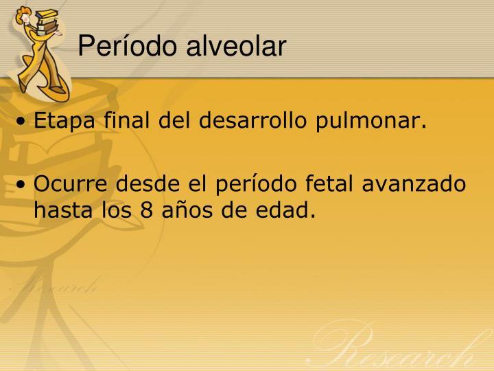 Período alveolar