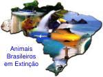 animais brasileiros em extin o