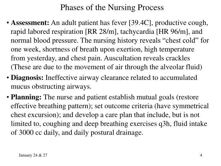 Ppt The Nursing Process Powerpoint Presentation Id 923206
