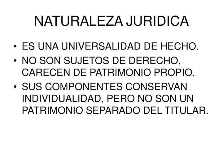 NATURALEZA JURIDICA