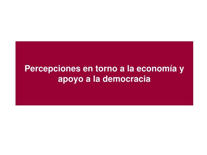 Percepciones en torno a la economía y apoyo a la democracia