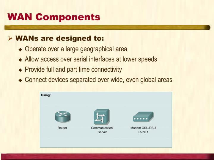 WAN Components