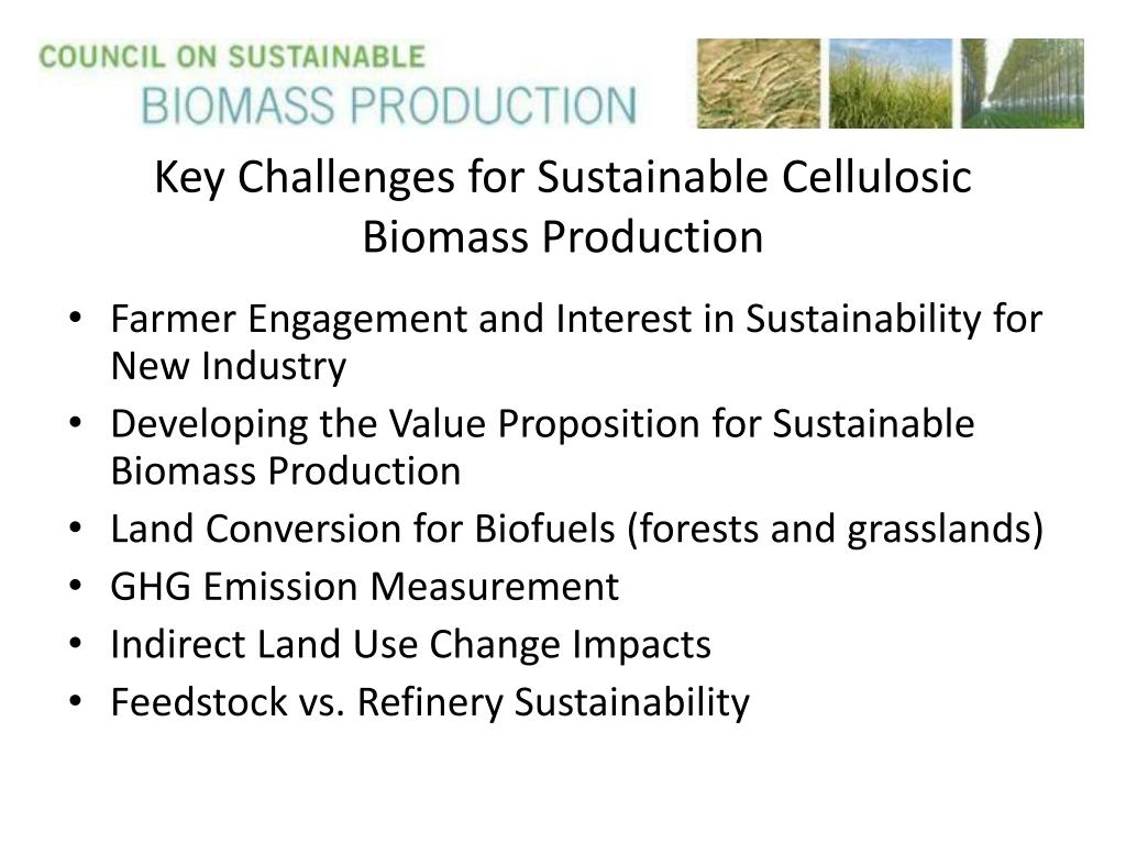 Key Challenges for Sustainable Cellulosic