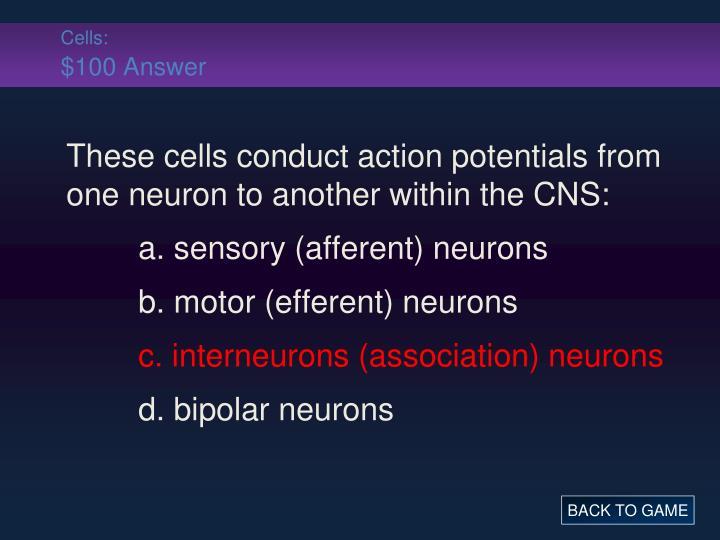 Cells: