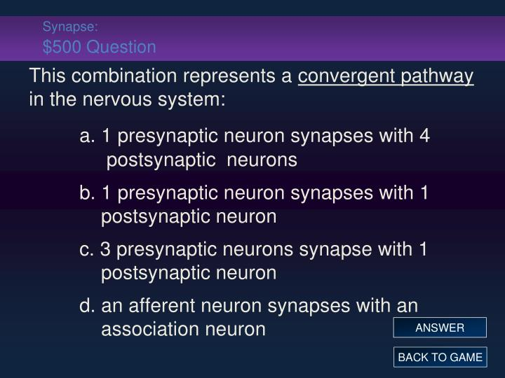 Synapse: