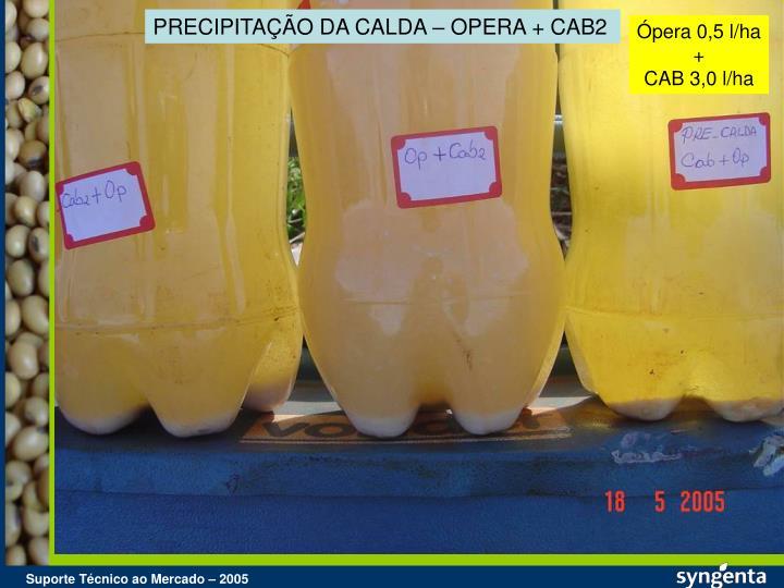 PRECIPITAÇÃO DA CALDA – OPERA + CAB2