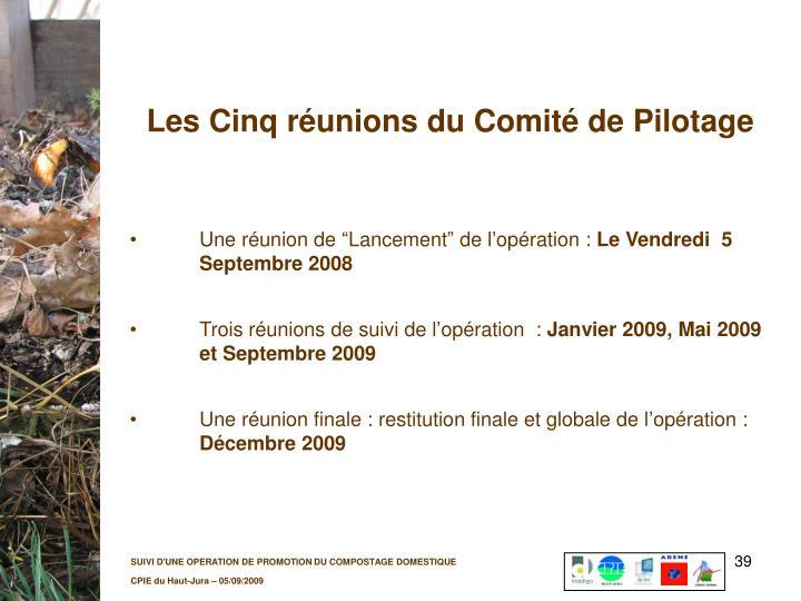 Les Cinq réunions du Comité de Pilotage