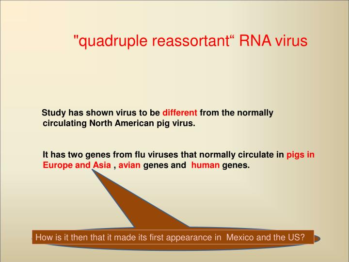 """quadruple reassortant"" RNA virus"