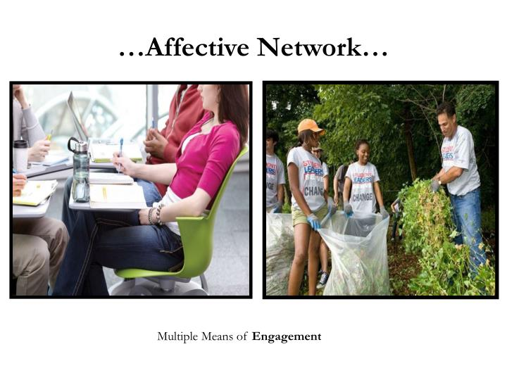 …Affective Network…