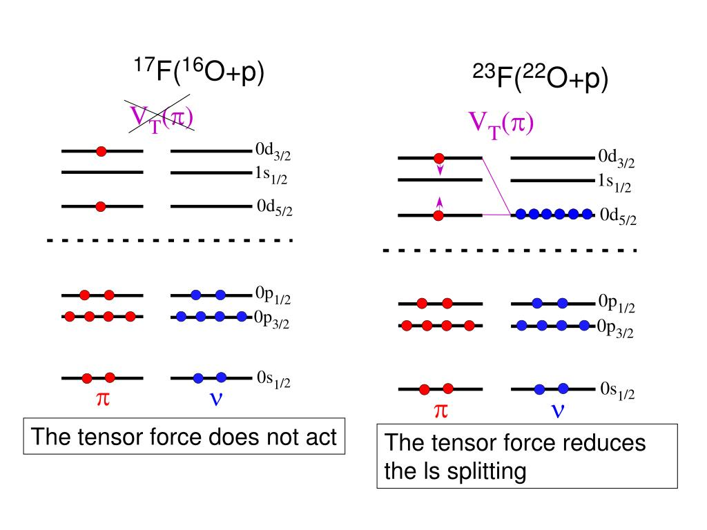 The tensor force does not act