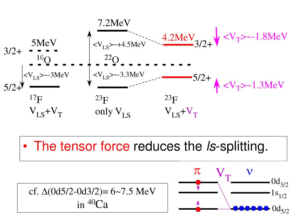 The tensor force