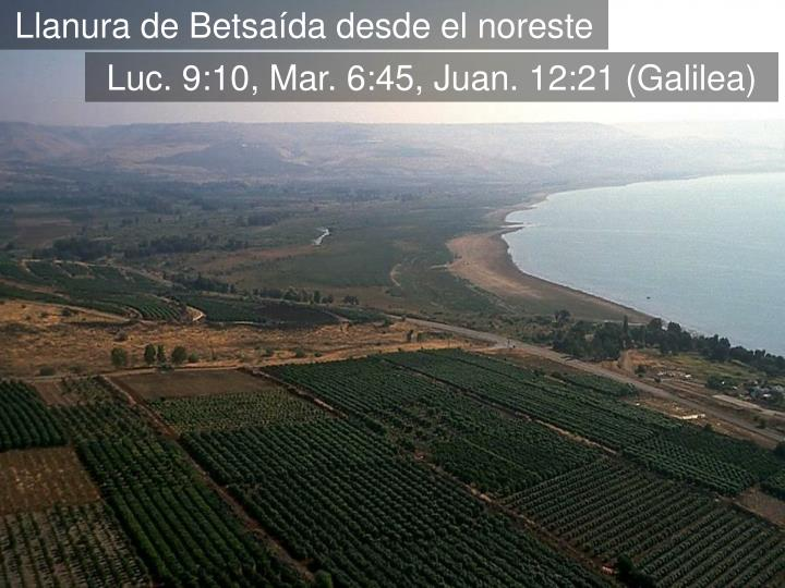 Bethsaida plain aerial from northwest