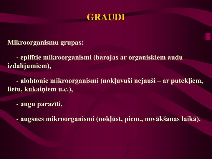GRAUDI