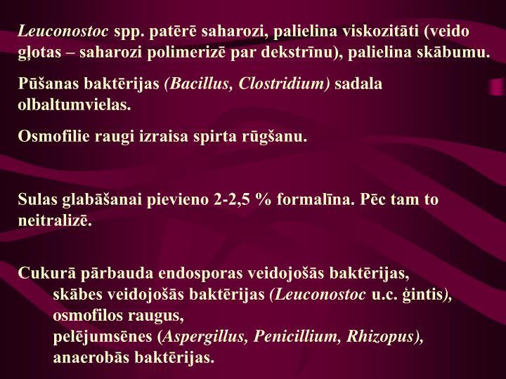 Leuconostoc