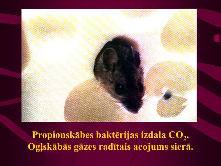 Propionskābes baktērijas izdala CO