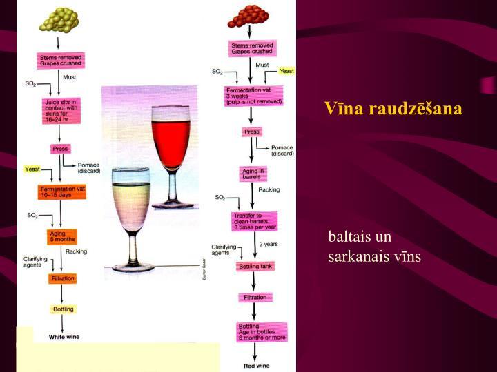 Vīna raudzēšana