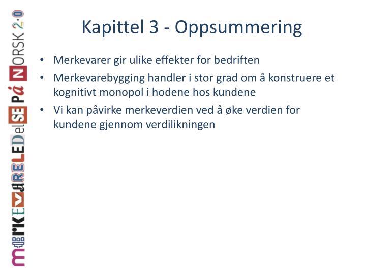 Kapittel 3 - Oppsummering