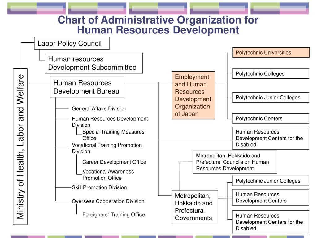 Chart of Administrative Organization for