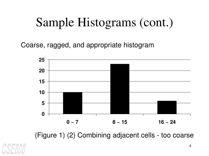 Coarse, ragged, and appropriate histogram