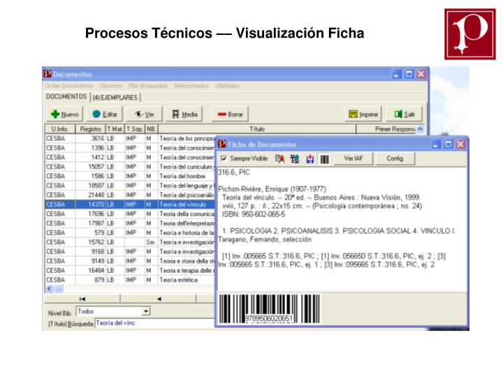 Procesos Técnicos –– Visualización Ficha