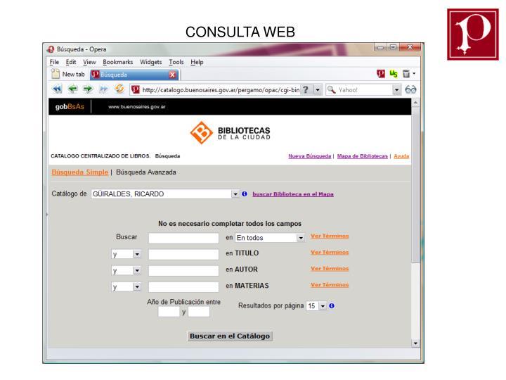 CONSULTA WEB