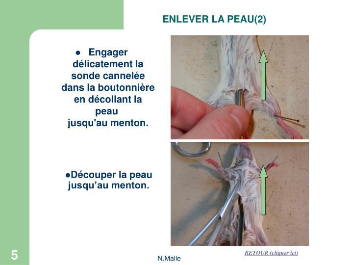ENLEVER LA PEAU(2)