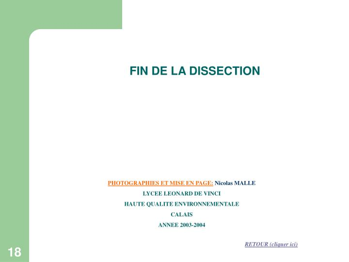 FIN DE LA DISSECTION